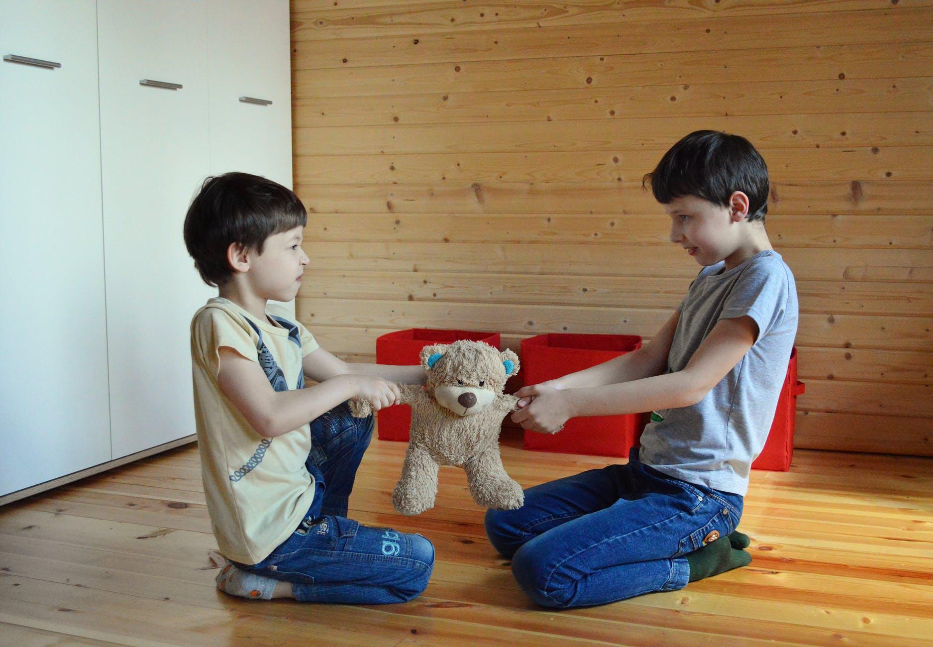 Otizm ve Diğer Gruptaki Çocuklara Özdenetim Becerisini Oyunlarla Kazandırma